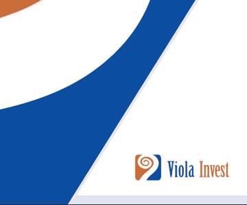 Knjiga grafičkih standarda Viola Invest